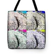 Ass Crack Rock In Quad Colors Tote Bag