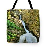 Aster Falls Tote Bag
