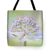 Astrantia Art Tote Bag by Jacky Parker