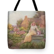 At The Well Tote Bag