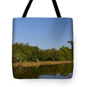 Atchafalaya Basin 24 Tote Bag