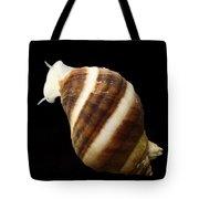 Atlantic Dogwhelk Tote Bag