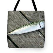 Atlantic Mackerel Scomber Scombrus Tote Bag