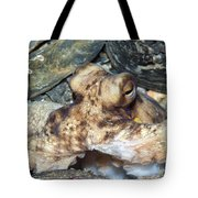 Atlantic Octopus In Shell Debris Tote Bag