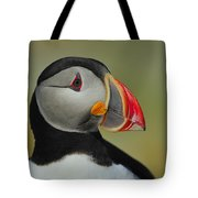 Atlantic Puffin Portrait Tote Bag