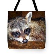 Au Naturale Coonie Tote Bag