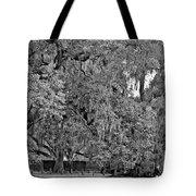 Audubon Park 2 Monochrome Tote Bag