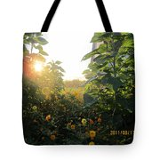 August Sunrise In The Garden Tote Bag