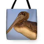 Augustine Brown Tote Bag
