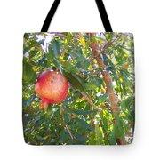 Aunt Tissy's Pomegranate Tree  Tote Bag