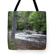 Ausable River 5252 Tote Bag