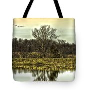 Auspicious Reflections Tote Bag