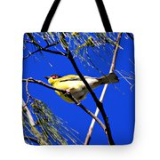 Australian Figbird Tote Bag