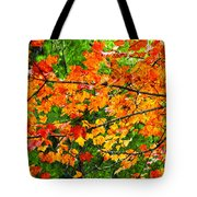 Autumn Abstract Painterly Tote Bag