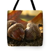 Autumn Acorns Tote Bag