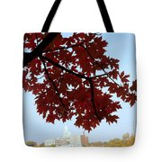 Autumn Afternoon In Peterborough Tote Bag