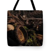 Autumn And Acorns Tote Bag