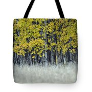 Autumn Aspen Grove Near Glacier National Park Tote Bag