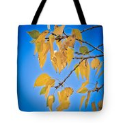 Autumn Aspen Leaves And Blue Sky Tote Bag