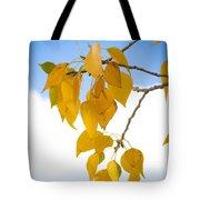 Autumn Aspen Leaves Tote Bag