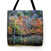Autumn At Beaver's Bend Tote Bag