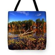 Autumn At Bomoseen Lake  Tote Bag