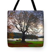 Autumn At British Camp Tote Bag