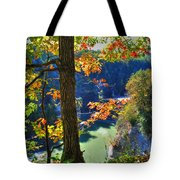Autumn At Letchworth State Park Tote Bag