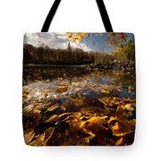 Autumn At Ragged Falls Tote Bag