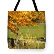 Autumn At The Schoolground Tote Bag