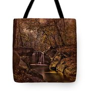 Autumn At The Waterfall In The Ravine In Central Park Tote Bag