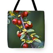 Autumn Berries Tote Bag