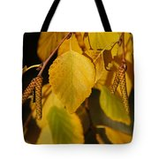 Autumn Birch In Southern Oregon Tote Bag