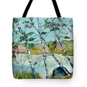 Autumn Birches Tote Bag