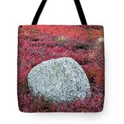 Autumn Blueberry Field Tote Bag