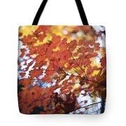Autumn Brilliance Tote Bag