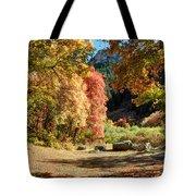 Autumn Campground In Blacksmith Fork Canyon - Utah Tote Bag