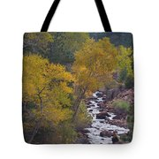 Autumn Canyon Colorado Scenic View Tote Bag