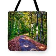 Adirondack Color 53 Tote Bag