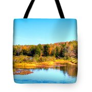 Adirondack Color 54 Tote Bag