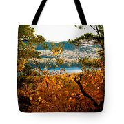 Bald Mountain View Tote Bag