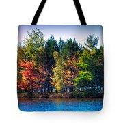 Adirondack Color 63 Tote Bag