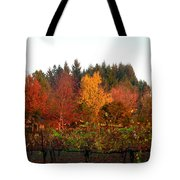 Autumn Colors In The Vineyard Tote Bag