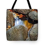 Autumn Colors Reflected In Pool Of Water Tote Bag