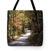 Autumn Country Lane Tote Bag by David Dehner