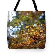 Autumn Crescendo Tote Bag