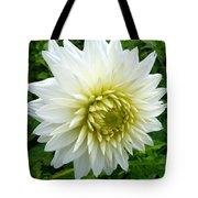 Autumn Dahlia Tote Bag