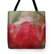 Autumn Dodwood Leaves Tote Bag