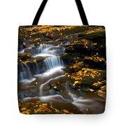 Autumn Falls - 72 Tote Bag