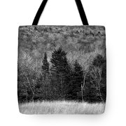 Autumn Field Bw Tote Bag